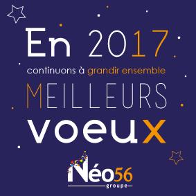 carte-de-voeux 2017